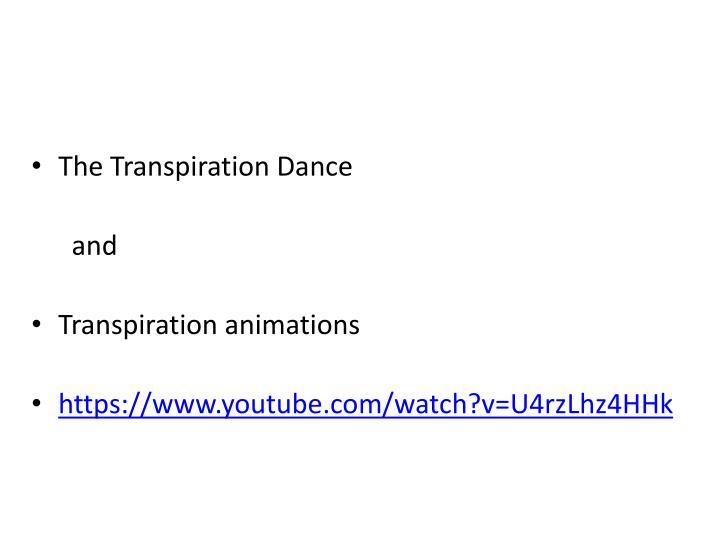The Transpiration Dance