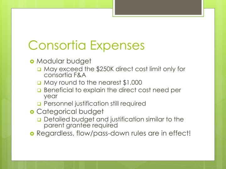 Consortia Expenses