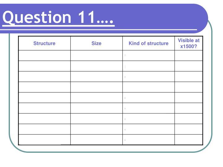Question 11….