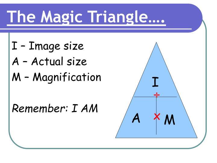 I – Image size
