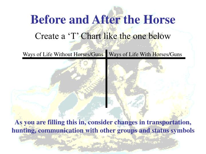 Before and after the horse