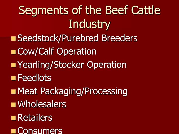 Segments of the Beef Cattle Industry