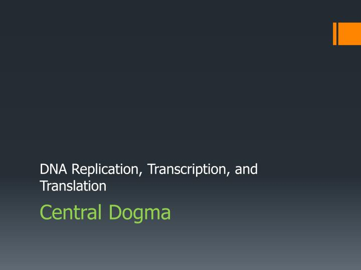 DNA Replication,