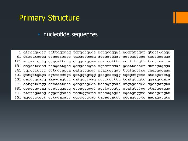 Primary Structure