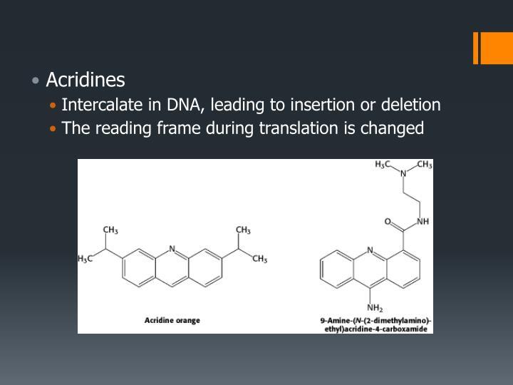 Acridines