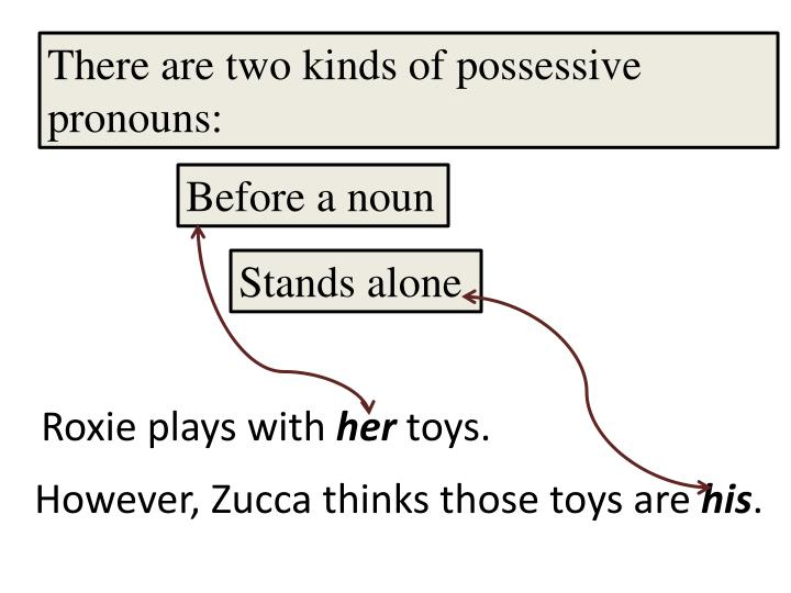 There are two kinds of possessive pronouns: