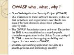 owasp who what why