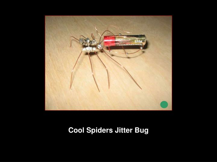 Cool Spiders Jitter Bug