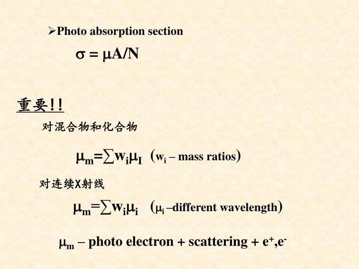 Photo absorption section