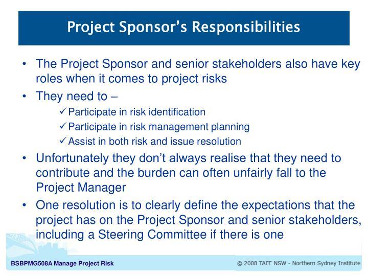 Project Sponsor's Responsibilities