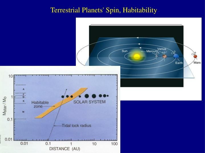 Terrestrial Planets' Spin, Habitability
