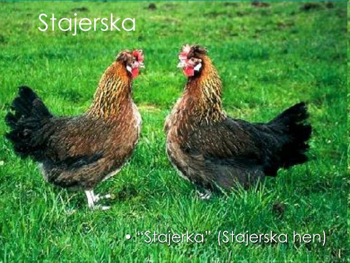 Stajerska