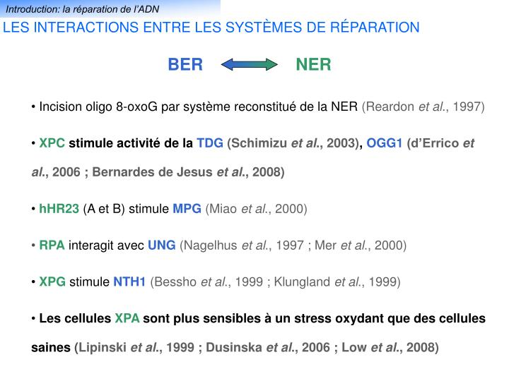 Introduction: la réparation de l'ADN