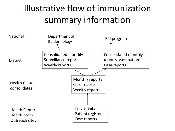 Illustrative flow of immunization summary information