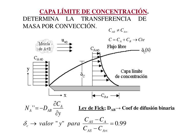 CAPA LMITE DE CONCENTRACIN