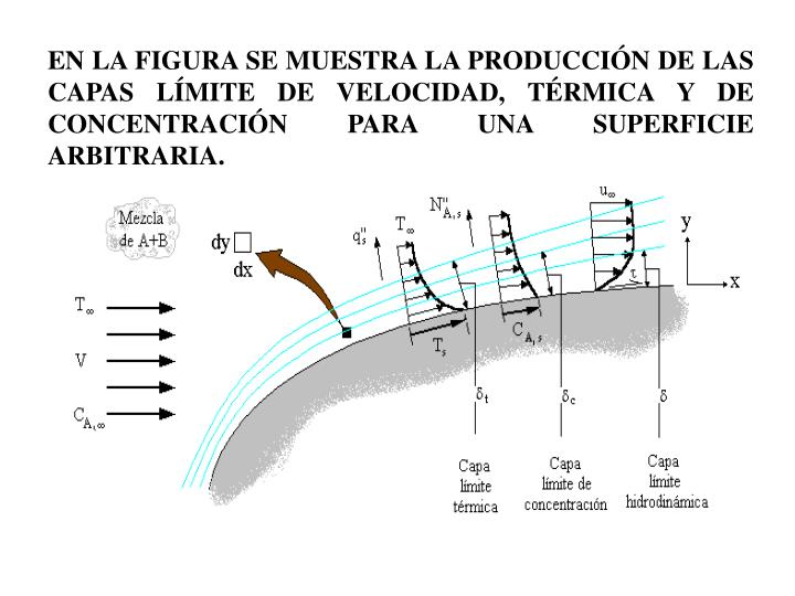 EN LA FIGURA SE MUESTRA LA PRODUCCIN DE LAS CAPAS LMITE DE VELOCIDAD, TRMICA Y DE CONCENTRACIN PARA UNA SUPERFICIE ARBITRARIA.