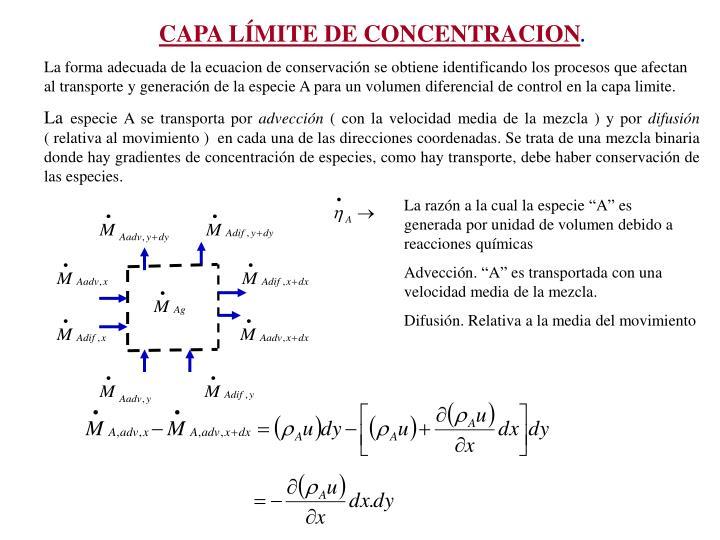 CAPA LMITE DE CONCENTRACION