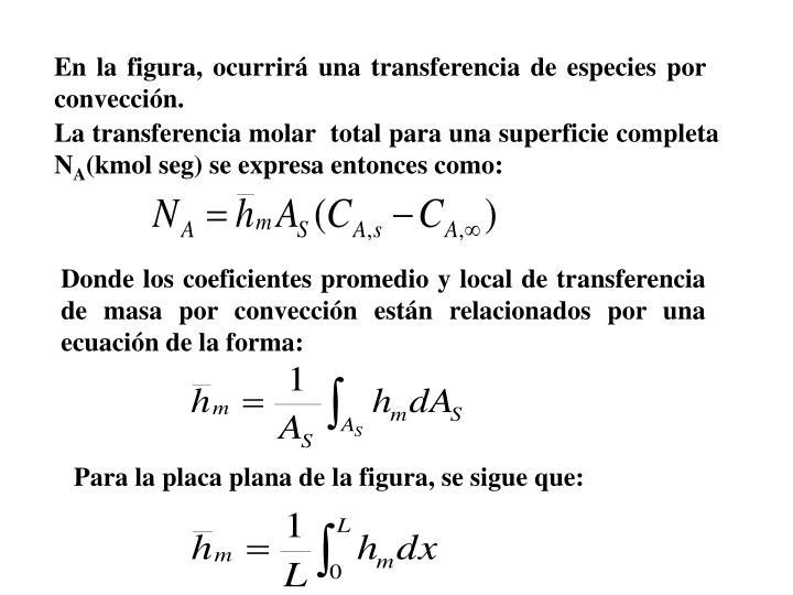 En la figura, ocurrir una transferencia de especies por conveccin.