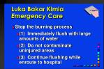 luka bakar kimia emergency care