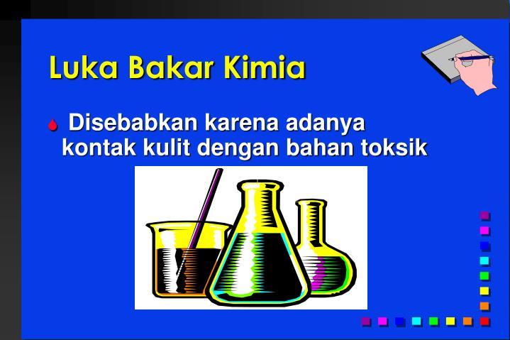 Luka Bakar Kimia