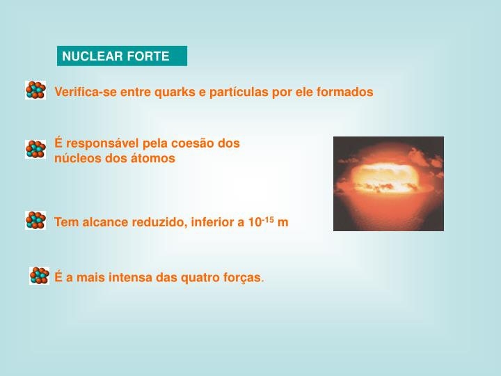 NUCLEAR FORTE