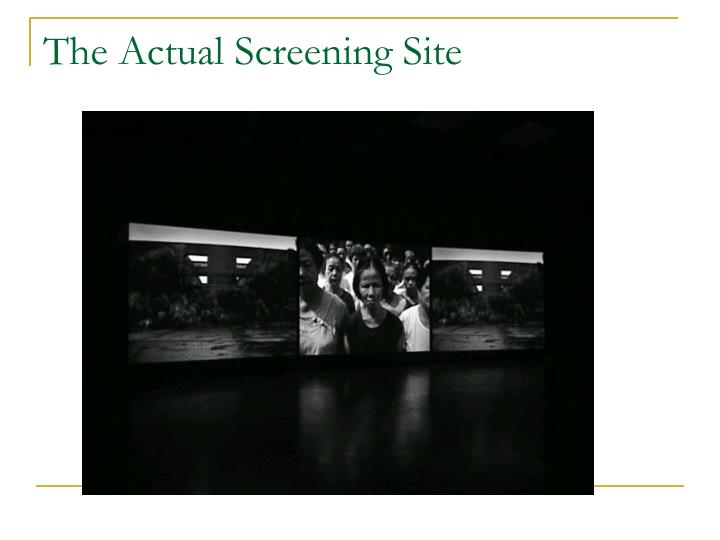 The Actual Screening Site
