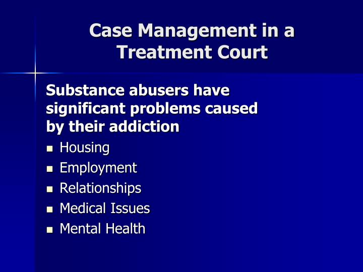 Case Management in a Treatment Court