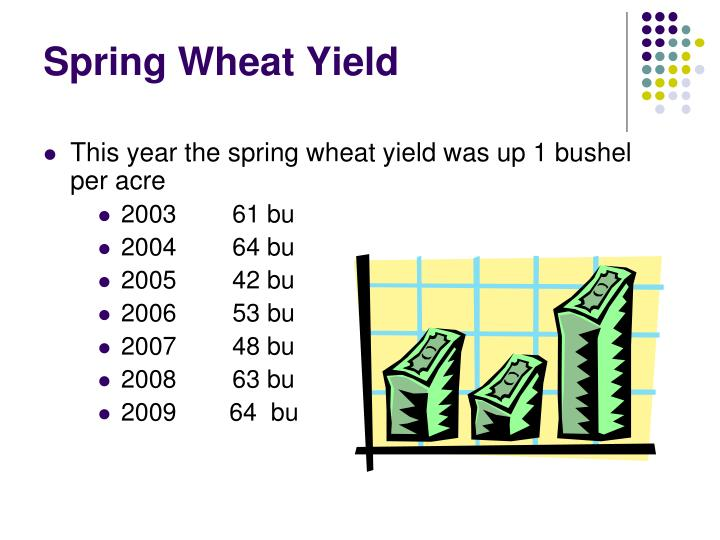 Spring Wheat Yield
