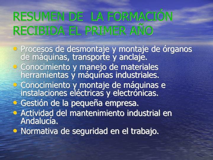 RESUMEN DE  LA FORMACIÓN RECIBIDA EL PRIMER AÑO