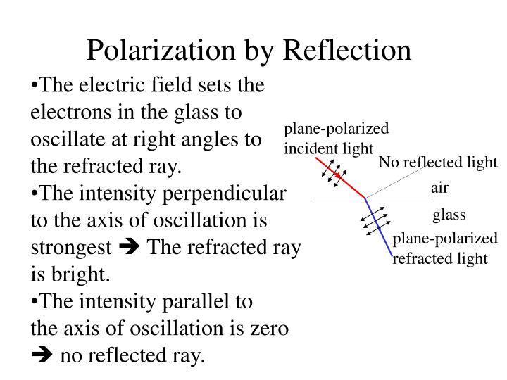 plane-polarized