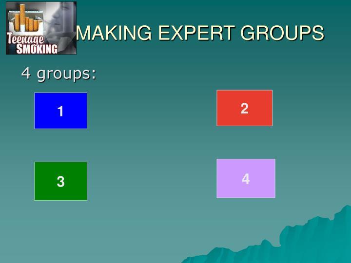 MAKING EXPERT GROUPS