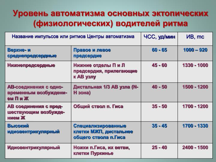 Уровень автоматизма основных эктопических (физиологических) водителей ритма
