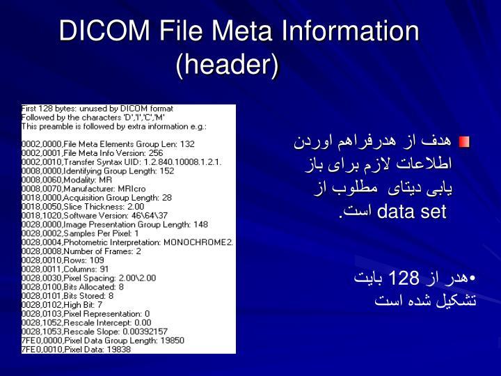 DICOM File Meta Information   (header)