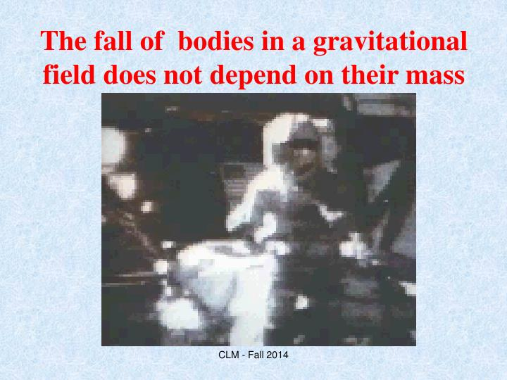 The fall of  bodies in a gravitational field does not depend on their mass