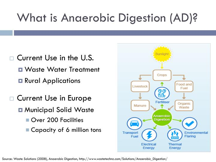 What is Anaerobic Digestion (AD)?