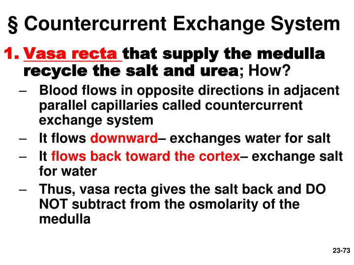§ Countercurrent Exchange System