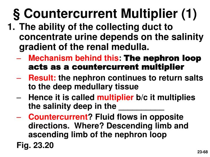 § Countercurrent Multiplier (1)