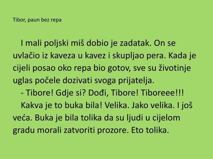 Tibor, paun bez repa
