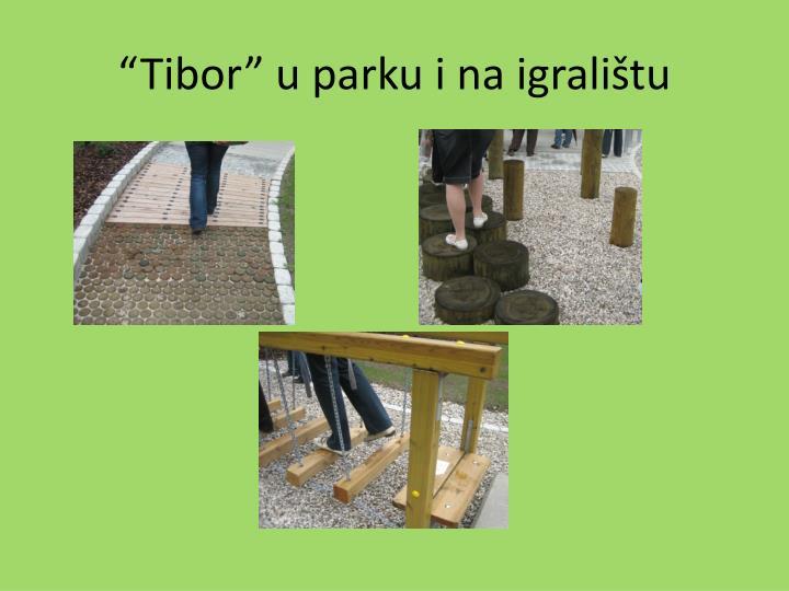 """""""Tibor"""" u parku i na igralištu"""