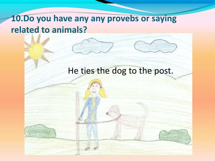 10.Do you have any any provebs or saying related to animals?