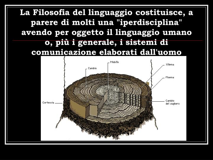 """La Filosofia del linguaggio costituisce, a parere di molti una """"iperdisciplina"""""""