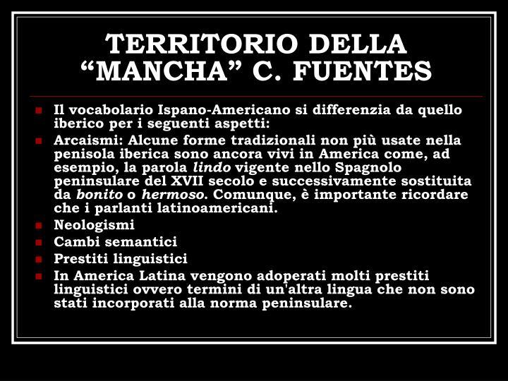 TERRITORIO DELLA MANCHA C. FUENTES