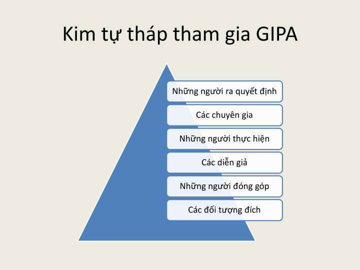 Kim tự tháp tham gia GIPA