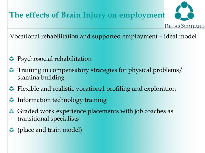 Vocational rehabilitation and supported employment – ideal model