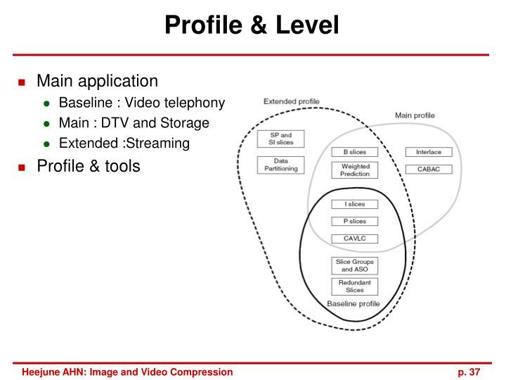 Profile & Level