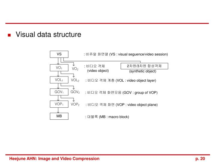 Visual data structure