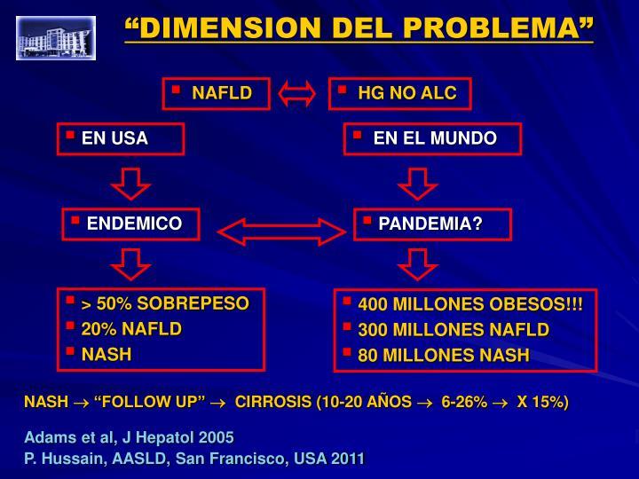 """""""DIMENSION DEL PROBLEMA"""""""
