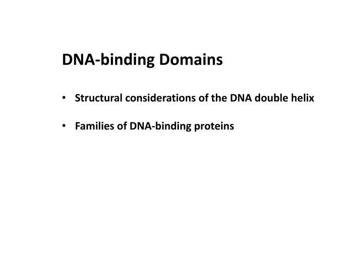 DNA-binding