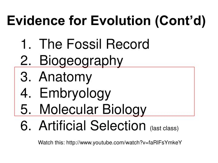 essay evidence evolution