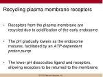 recycling plasma membrane receptors
